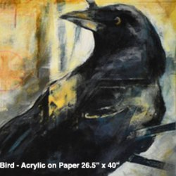 the crow show-studio door 2015-belgin yucelen